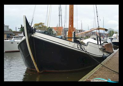 Noordzeebotter