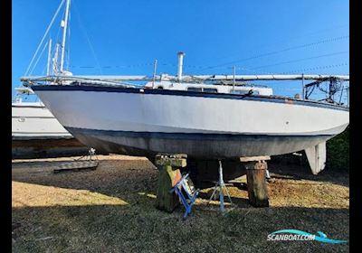 Classic Yacht Classic Kliever 11