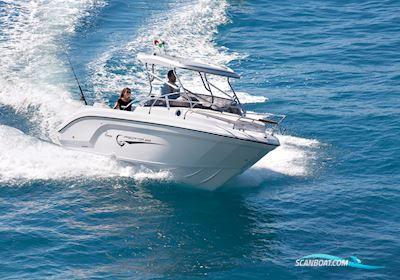 Motor boat Ranieri Predator 222