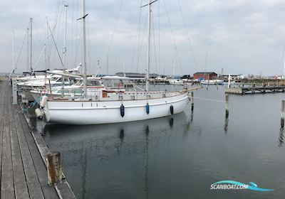 Motor sailor Albatros 33