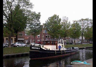 Motorbåt Recreatievaartuig Sleepboot
