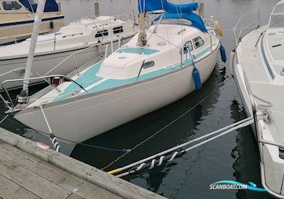 Sailing boat Kings Cruise 29