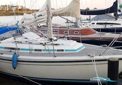 Sailing boat LM Mermaid 315