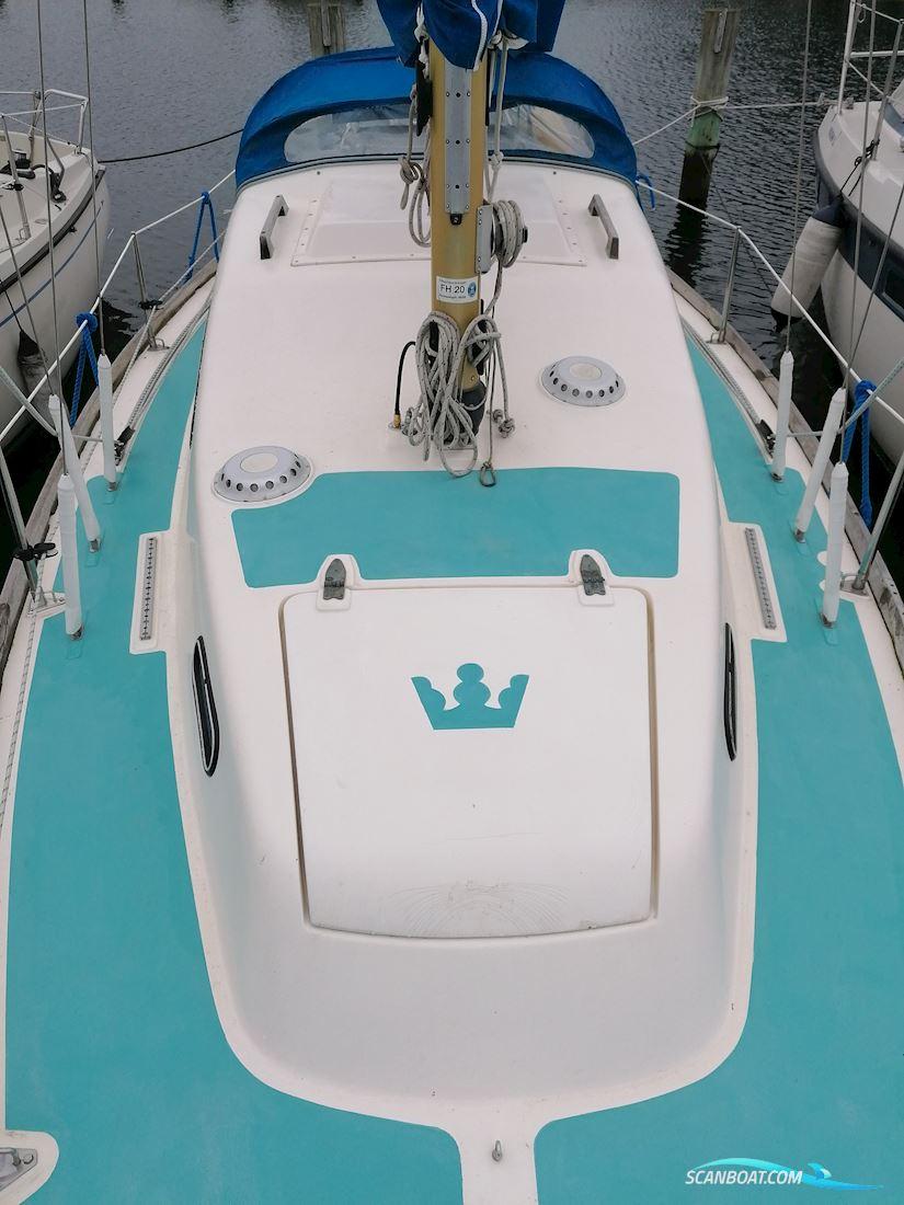 Kings Cruiser 29