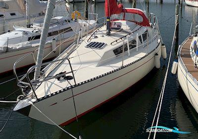 Segelbåt Nardus 92