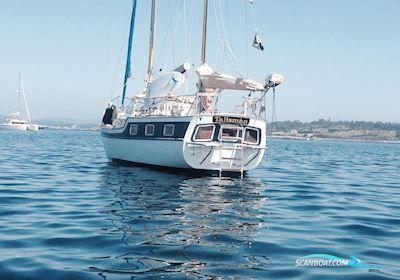 Segelbåt Trintella IV