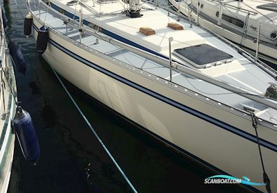Segelboot Bianca 111 Toprigget - Ratstyring