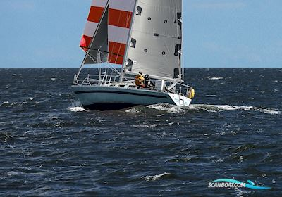 Segelboot Faurby 999