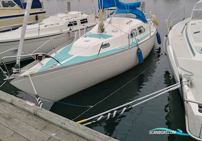 Segelboot Kings Cruiser 29